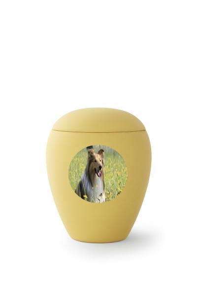https://grafdecoratie.nl/photos/20793-transferbild-rond-dieren-urn-urnwebshop.jpg
