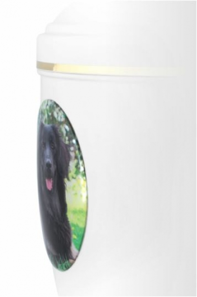 2D-Fotomedaillon Huisdier op Keramische VOL Urn