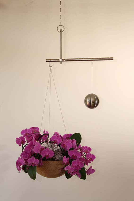 https://grafdecoratie.nl/photos/Balance-Design-Urn-Bol-Plant-03.JPG