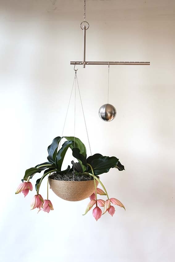 https://grafdecoratie.nl/photos/Balance-Design-Urn-Bol-Plant-Small.JPG