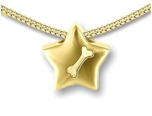 Gouden Assieraad Ster met Botje