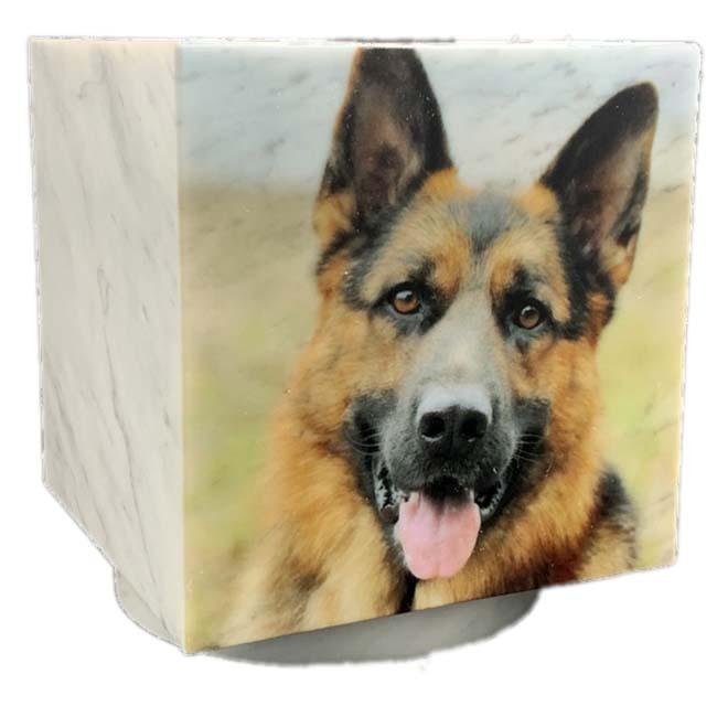 Cubos Hondenurn, Fotoprint Fulcolour Eigen Hond (0.3 liter)