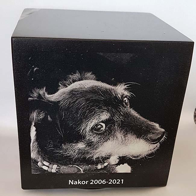 Cubos Hondenurn, Fotoprint Zwartwit Eigen Hond (0.3 liter)