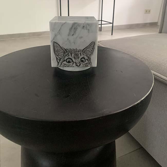 Laser Fotogravure Zwartwit op Marmer Cubos Dierenurn