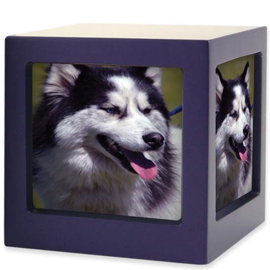 https://grafdecoratie.nl/photos/TB-CMPCD15-85-Large-photo-cube-dieren-urn.jpg
