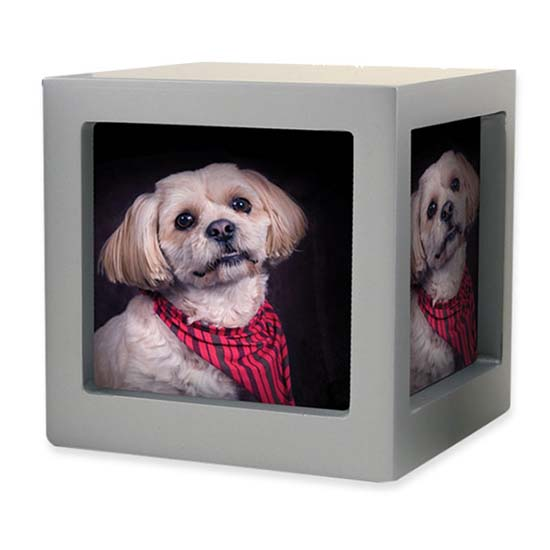 https://grafdecoratie.nl/photos/TB-CMPCD16-45-Medium-photo-cube-dieren-urn.jpg