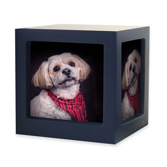 https://grafdecoratie.nl/photos/TB-CMPCD17-45-Medium-photo-cube-dieren-urn.jpg