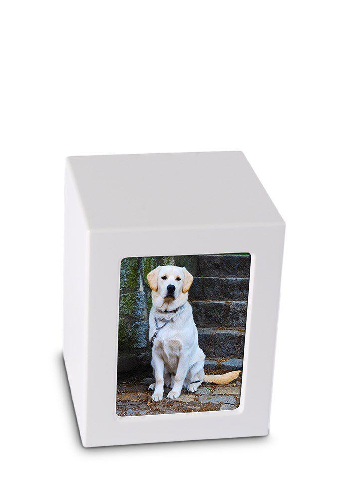 Mediumgrote MDF Photobox Urn Matwit (1.5 liter)