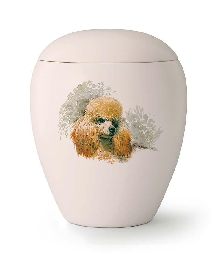 Middelgrote Honden Urn Poedel (1.5 liter)