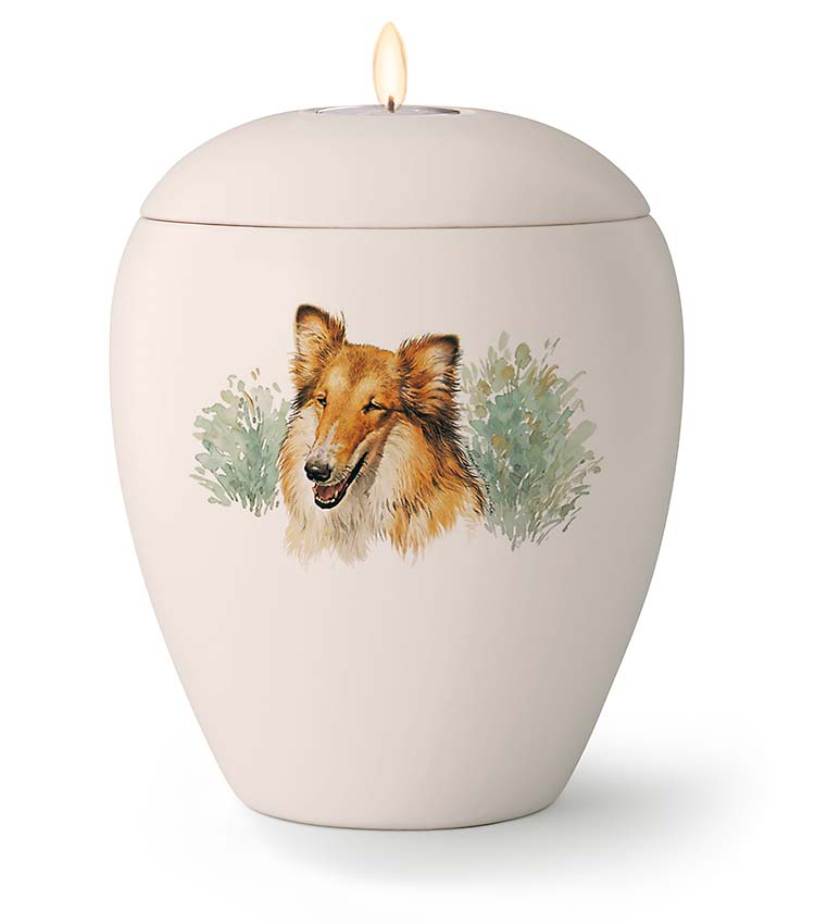 Middelgrote Honden Urn Collie (1.5 liter)