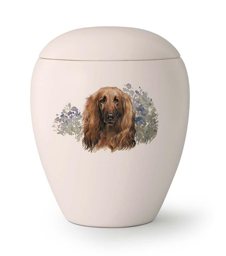 Middelgrote Honden Urn Afghaanse Windhond (1.5 liter)