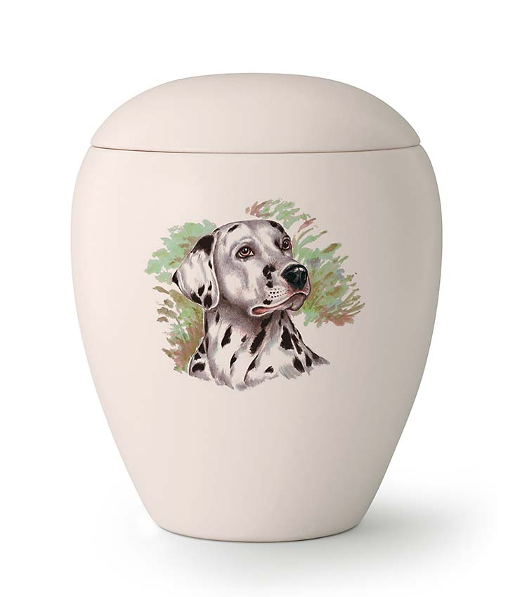 Middelgrote Honden Urn Dalmatier (1.5 liter)
