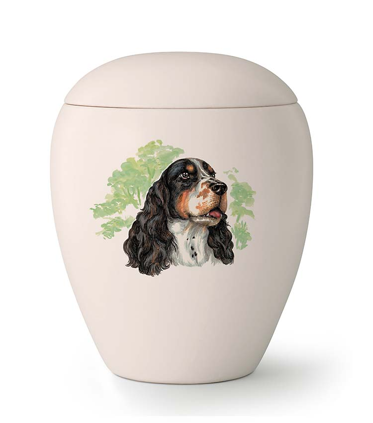 Middelgrote Honden Urn Springer Spaniel (1.5 liter)