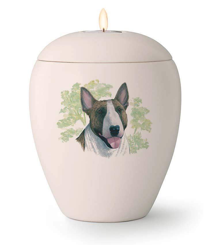 Middelgrote Honden Urn Bulterrier (1.5 liter)