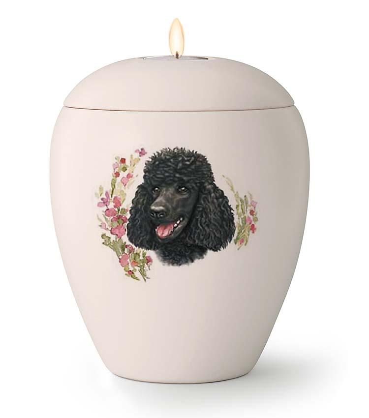 Middelgrote Honden Urn Zwarte Poedel (1.5 liter)