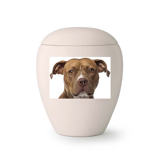 Middelgrote Keramische Foto Urn, met Eigen Hond (1.5 liter)