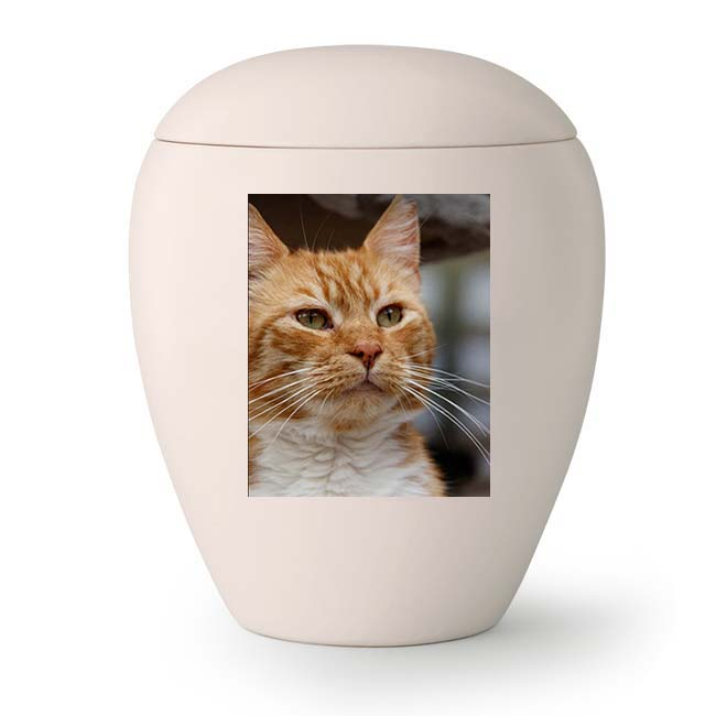 Kleine Keramische Foto Urn, met Eigen Kat (0.5 liter)