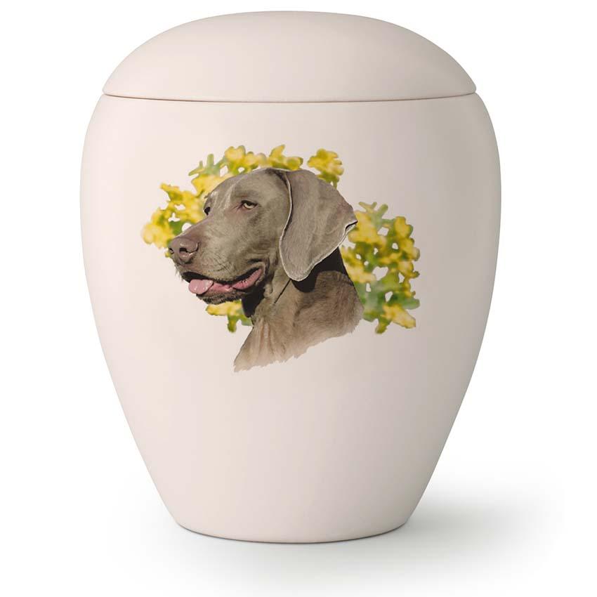 Grote Honden Urn Weimaraner (2.8 liter)