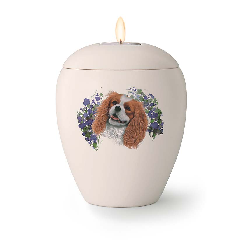 Kleine Honden Urn Cavalier King Charles Spaniel (0.5 liter)