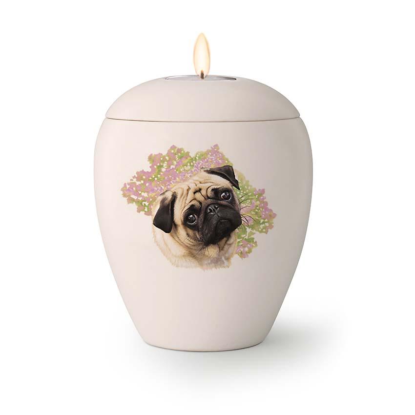 Kleine Honden Urn Mopshond (0.5 liter)