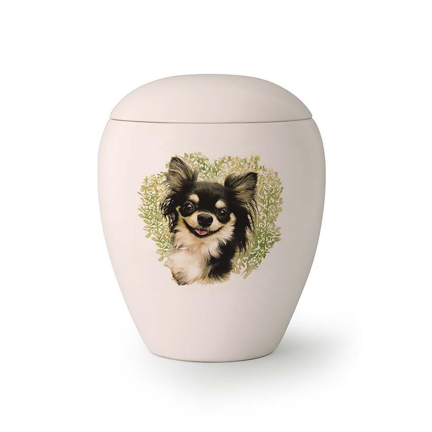 Kleine Honden Urn Chihuahua (0.5 liter)