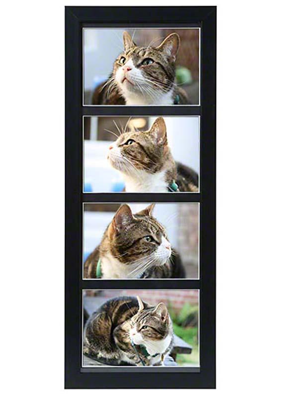 https://grafdecoratie.nl/photos/dieren-fotolijst-urn-PB-TF-1650-BLK.JPG