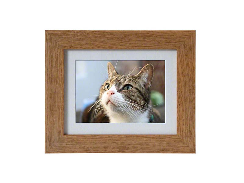 https://grafdecoratie.nl/photos/dieren-fotolijst-urn-PB-TF-550-OAK.JPG