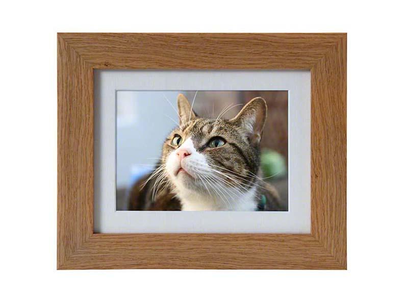 https://grafdecoratie.nl/photos/dieren-fotolijst-urn-PB-TF-950-OAK.JPG