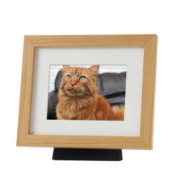 https://grafdecoratie.nl/photos/dieren-fotolijst-urn-PB-TFP11NO.JPG