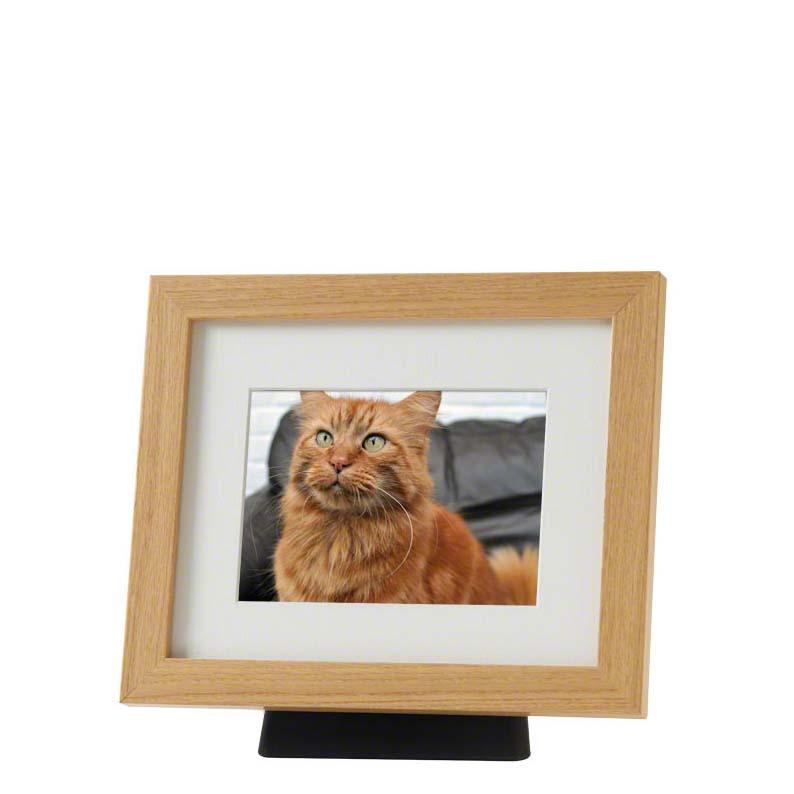 https://grafdecoratie.nl/photos/dieren-fotolijst-urn-PB-TFP6NO.JPG