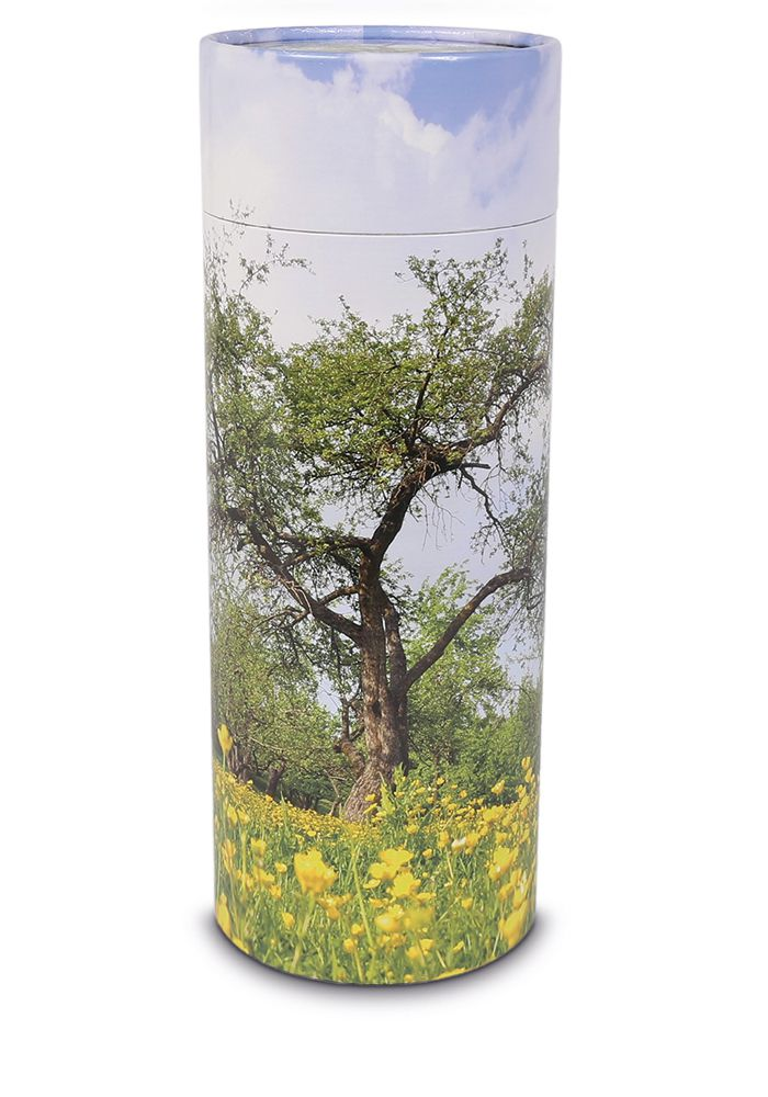Grote Bio Eco Urn of As-strooikoker Boom (3 liter)