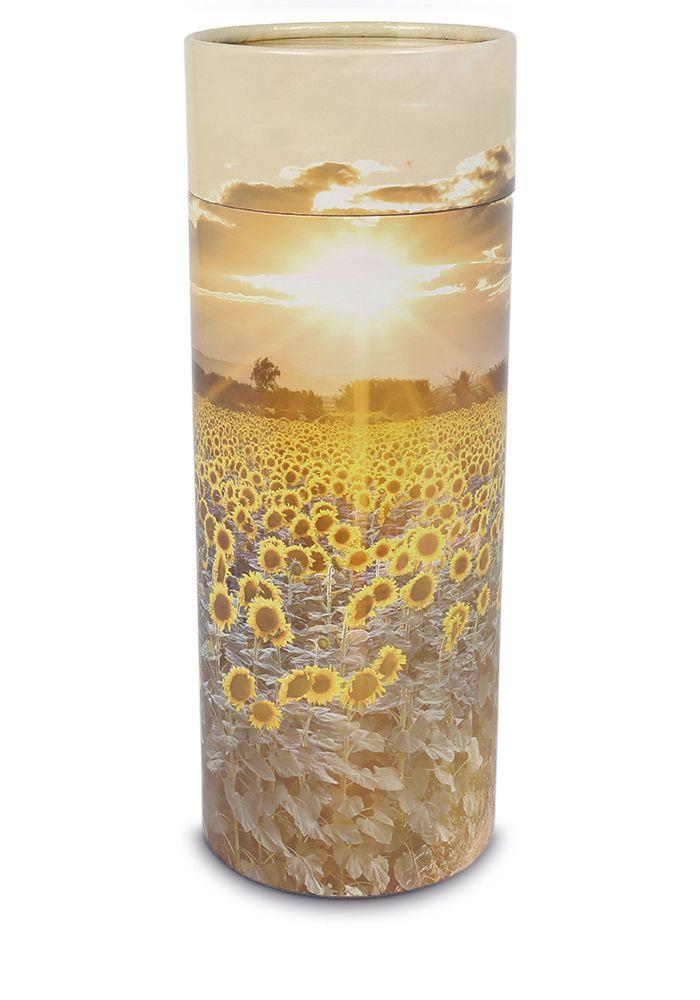https://grafdecoratie.nl/photos/eco-urn-strooikoker-groot-Zonnebloemen-WD-UST012.jpg