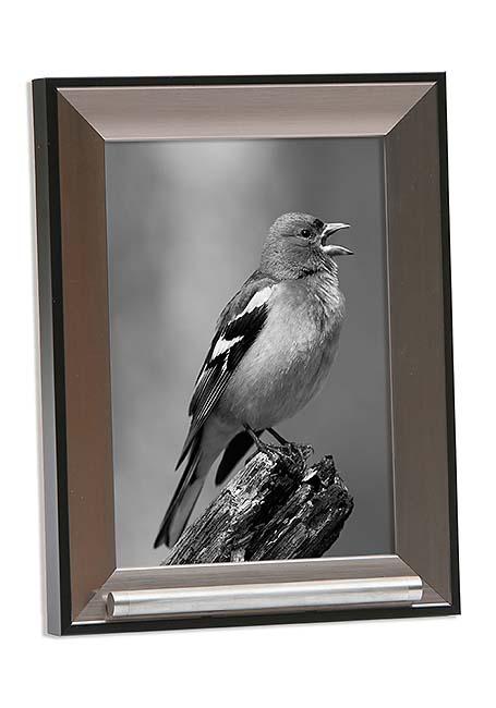 https://grafdecoratie.nl/photos/fotolijst-dierenurn-portret-dierenurn-fotolijst-met-askader-45FD2A13.jpg