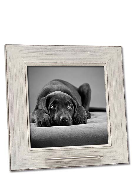 https://grafdecoratie.nl/photos/fotolijst-dierenurn-portret-huisdier-urn-fotolijst-met-askader-48SK1A2020.jpg