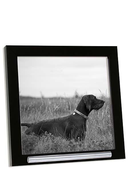 Zwarte Dieren Fotolijst met RVS Asbuisje (0.03 liter)