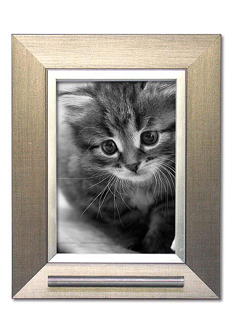 https://grafdecoratie.nl/photos/fotolijst-dierenurn-portret-urn-fotolijst-met-askader-41ND1A13.jpg