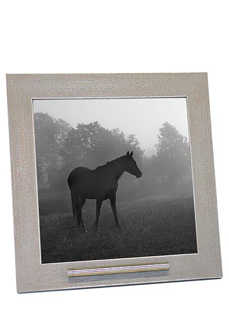 Dieren Fotolijst Oudgrijs, RVS Asbuisje (0.015 liter)