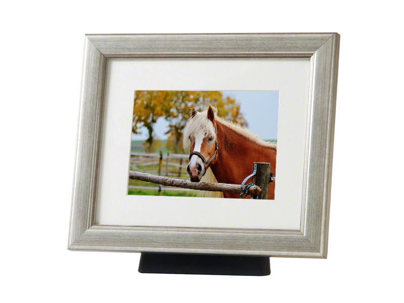 Paard of Pony Urn met Houten Fotolijst (4 liter)