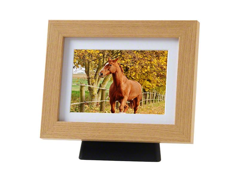 https://grafdecoratie.nl/photos/paarden-fotolijst-urn-PB-TFP4NO.JPG